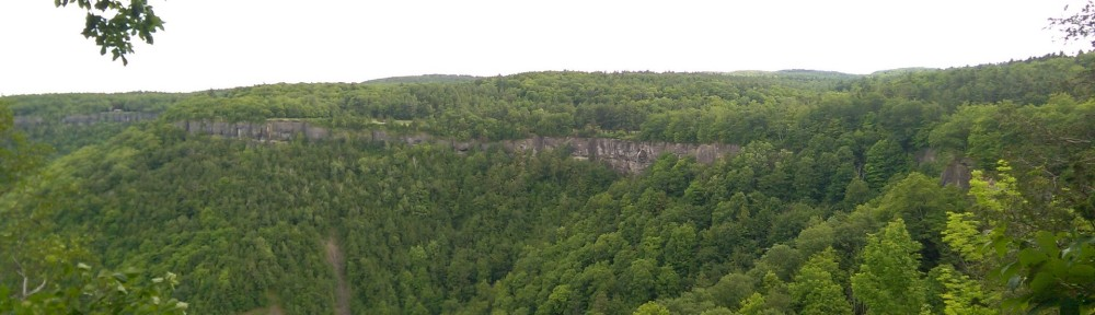 A few looking across at the cliffs at Thacher Park