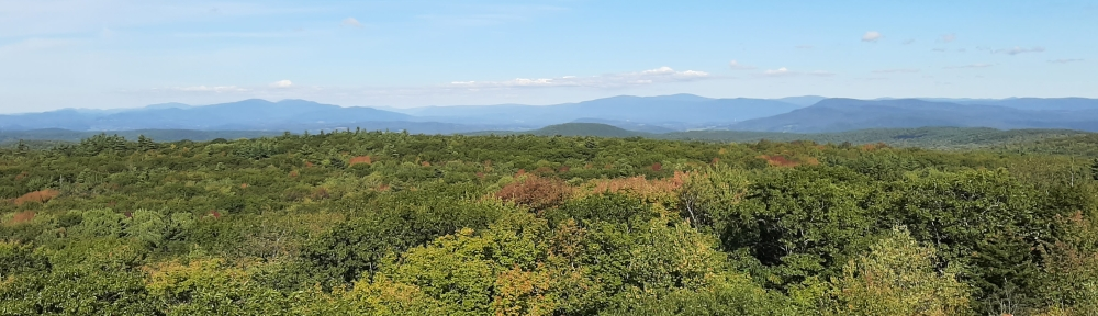 View from Grafton Fire Tower looking northeast.